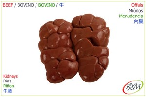 miudos,03,kidneys, rins